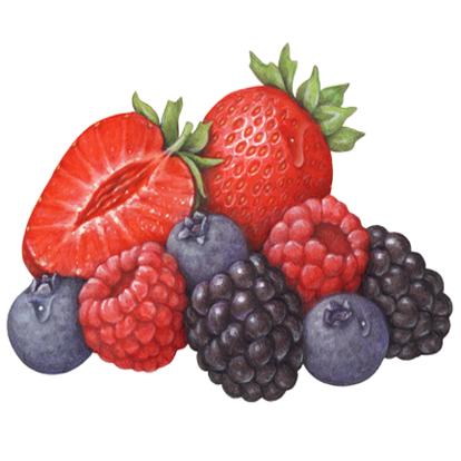 th-berries
