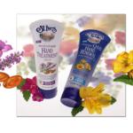 Flowers including lavender and evening primrose.