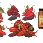 Illustrations of chilies including chipotle, ancho, arbol, and guajillo.