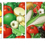 Salsa ingredient illustrations for Wal-Mart.