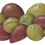 0live Medley consisting of Greek Black, Queen Green, Castel, Kalamata, Calamata, and California Sacilian Green Cracked olives