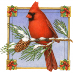 Christmas icon of a cardinal on a pine branch