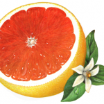 Cut pink grapefruit half with flower and leaves