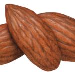 Three whole almonds without shells