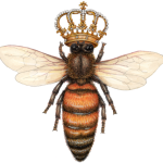 An overhead view of a queen bee with a crown.