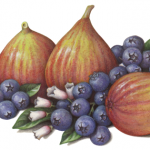 Three figs with two bunches of blueberries