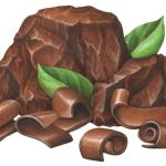 Chocolate chunks and chocolate ribbon shavings