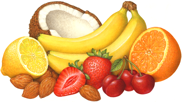 Image result for clipart of fruit and nuts