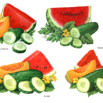 Watermelon, cantaloupe, cucumber