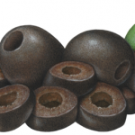 Two whole black olives and a mound of sliced black olives