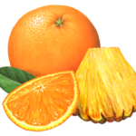 Whole orange with a cut orange section, a cut pineapple wedge, and a leaf.