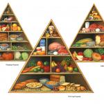 FDA food pyramid, phytofood pyramid, and California diet food pyramid.
