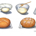 Artisan bread baking instructional illustrations.