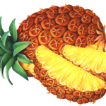 Whole pineapple with two cut pineapple slices
