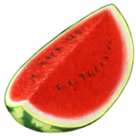 Watermelon whole cut wedge