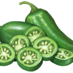 Jalapeno peppers with one whole jalapeno, a cut pepper and five jalapeno slices.