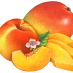 One whole peach and slice with A whole mango and three slices with a peach flower and leaf.