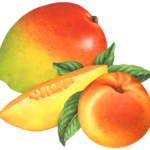 One whole mango and one mango slice with a whole peach and four peach leaves.