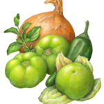 Vegetable ingredients for carnitas, including three tomatillos, an onion, oregano and jalapeno pepper.