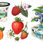 Illustrations of raspberries, blueberries, strawberries and apricots.