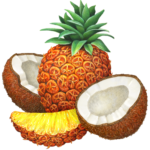 Whole pineapple with a pineapple slice and two cut coconut halves.