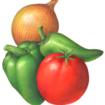 Salsa ingredients including tomato, onion, bell pepper and jalapeno pepper.