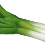 Three leeks.