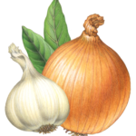 Whole onion, garlic and two bay leaves.