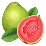 One whole guava and a cut half guava with two leaves.