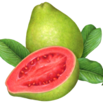 Whole guava with a cut guava half and leaves.