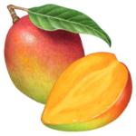 One whole mango with a leaf and a cut half mango.