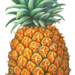 One whole pineapple.