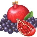 One whole pomegranate with a cut pomegranate section and strands of acai berries.