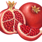 Whole pomegranate with a pomegranate cut half and cut section.