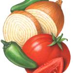 Salsa Ingredients: tomato, onion, jalapeno pepper